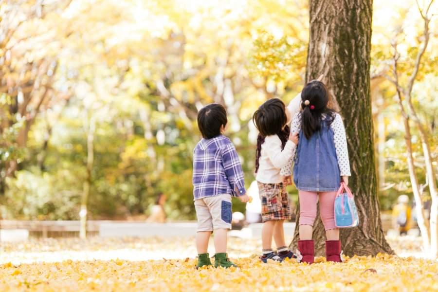 遠足で遊んでいる子供たち