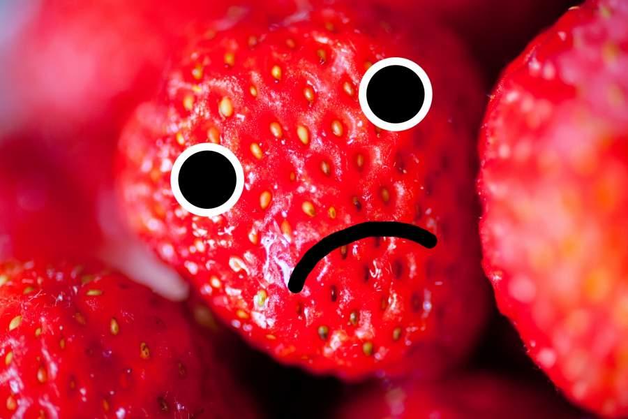 困っているイチゴ